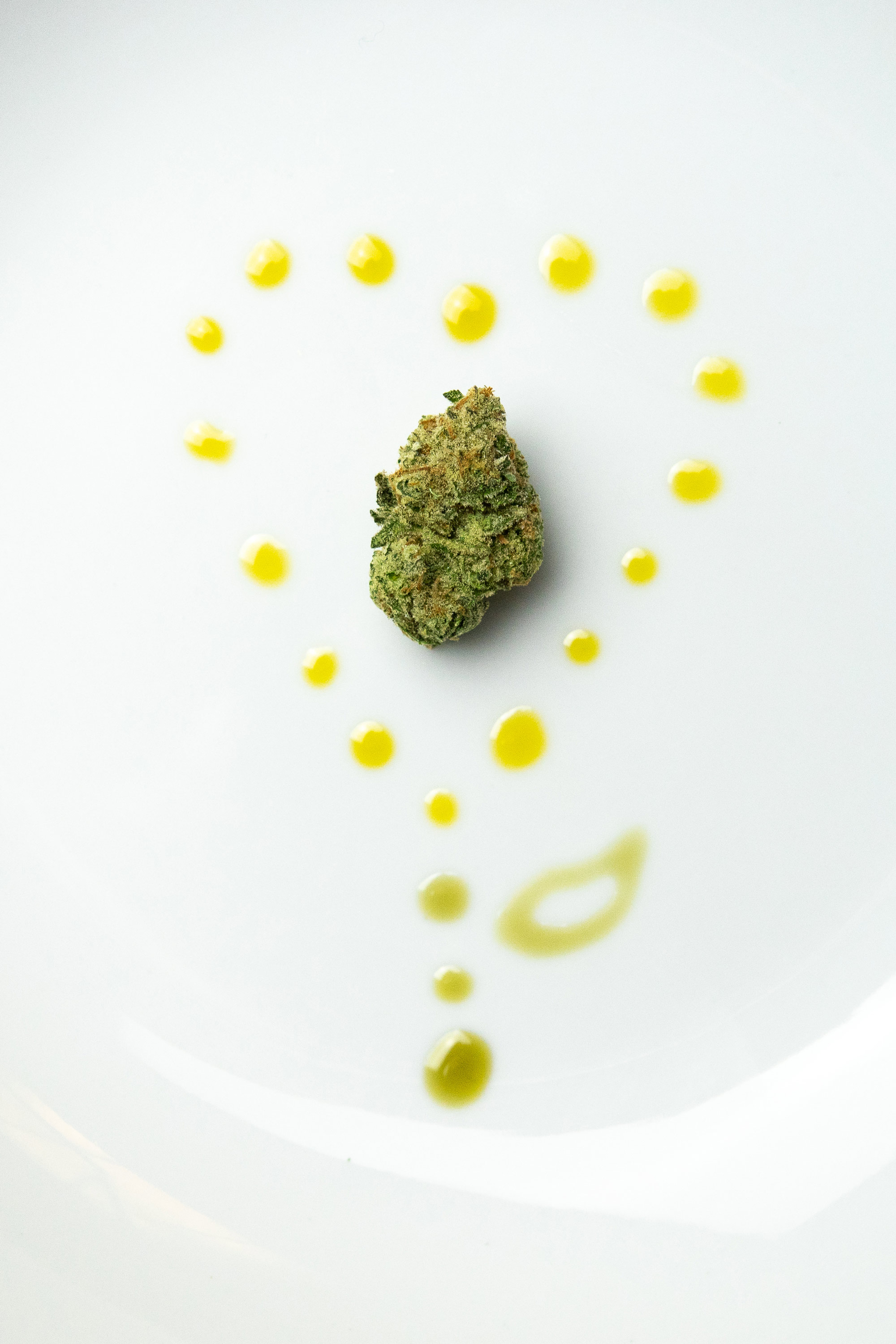 following license: English Cannabis Nug on a White Plate surrounded by Cannabis Oil in a Heart Shape with a Leaf URL: https://commons.wikimedia.org/wiki/user:Sherpa_SEO