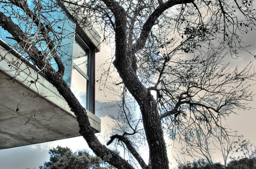 Casa las hormigas wikipedia la enciclopedia libre - Casa de hormigas ...