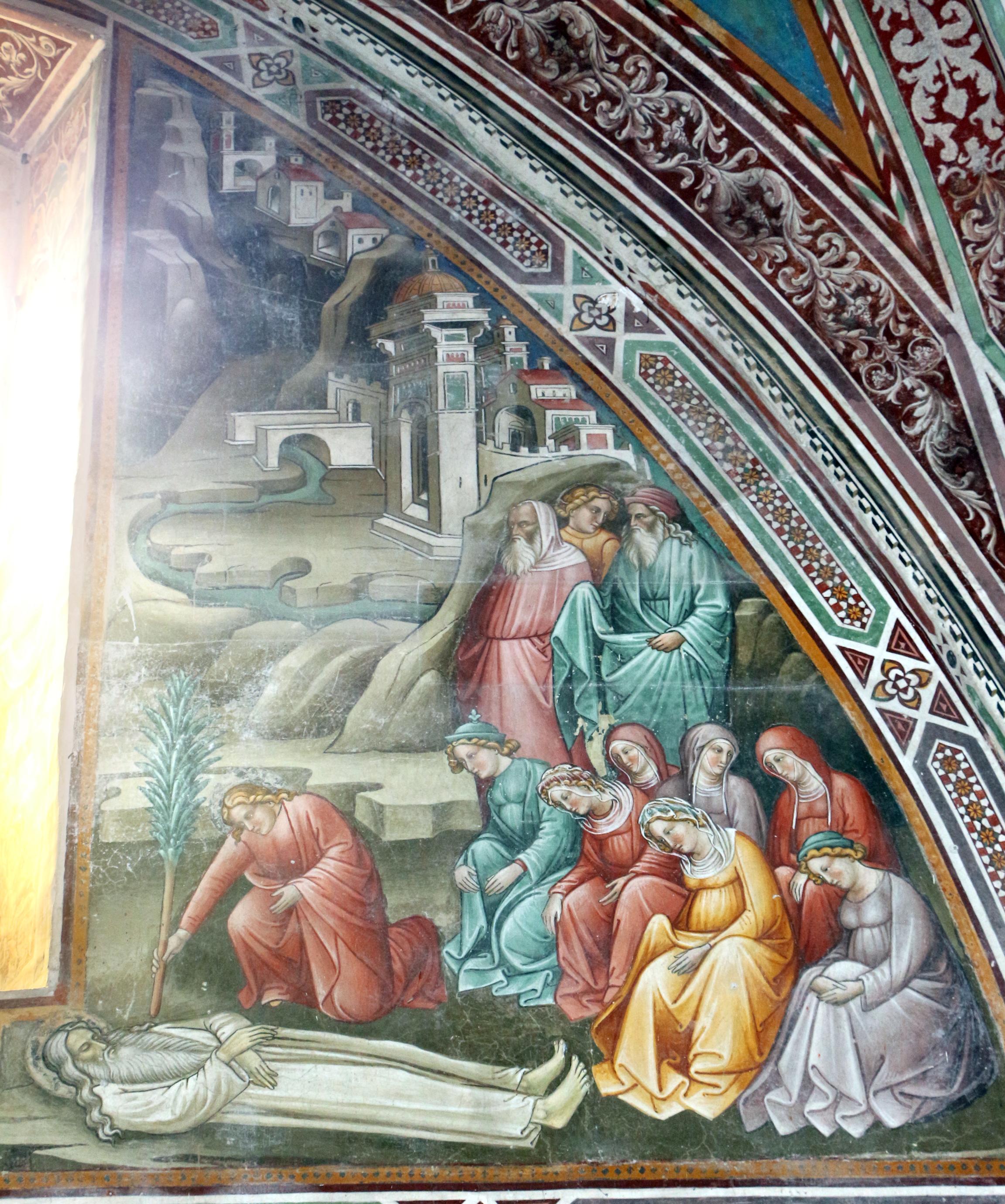 Immagini Di Piante E Alberi file:cenni di francesco, cappella della croce di giorno
