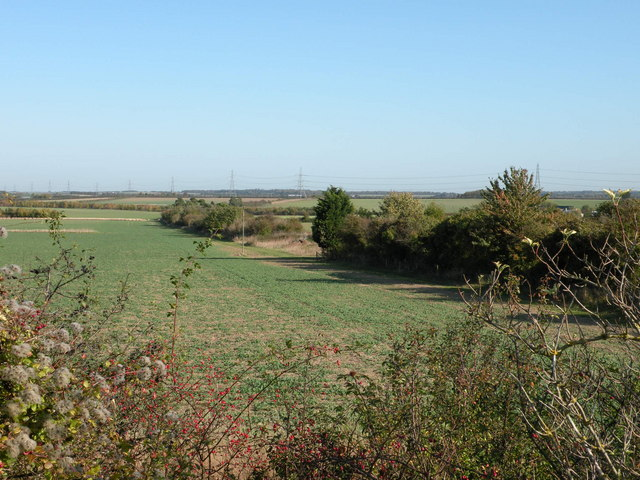 Course of old railway near Fleam Dyke - geograph.org.uk - 1017186