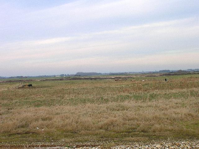 Farmland, Bracklesham Bay - geograph.org.uk - 97253