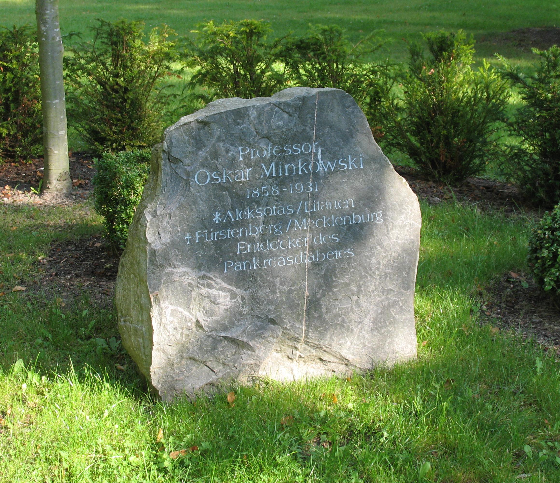 Minkowski-Gedenkstein im Stadtpark