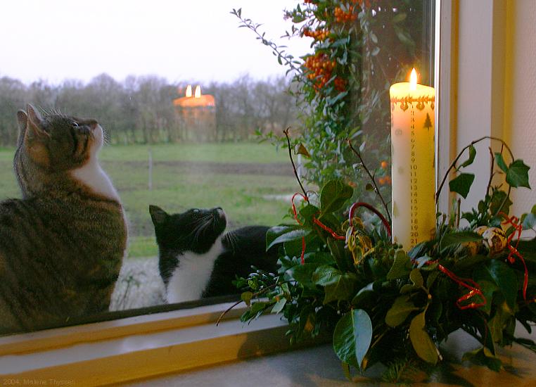 Tradizioni natalizie danesi: la candela numerata (Kalenderlys)