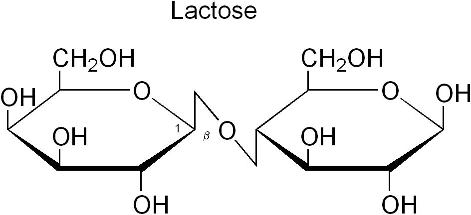 Непереносимость лактозы — Википедия