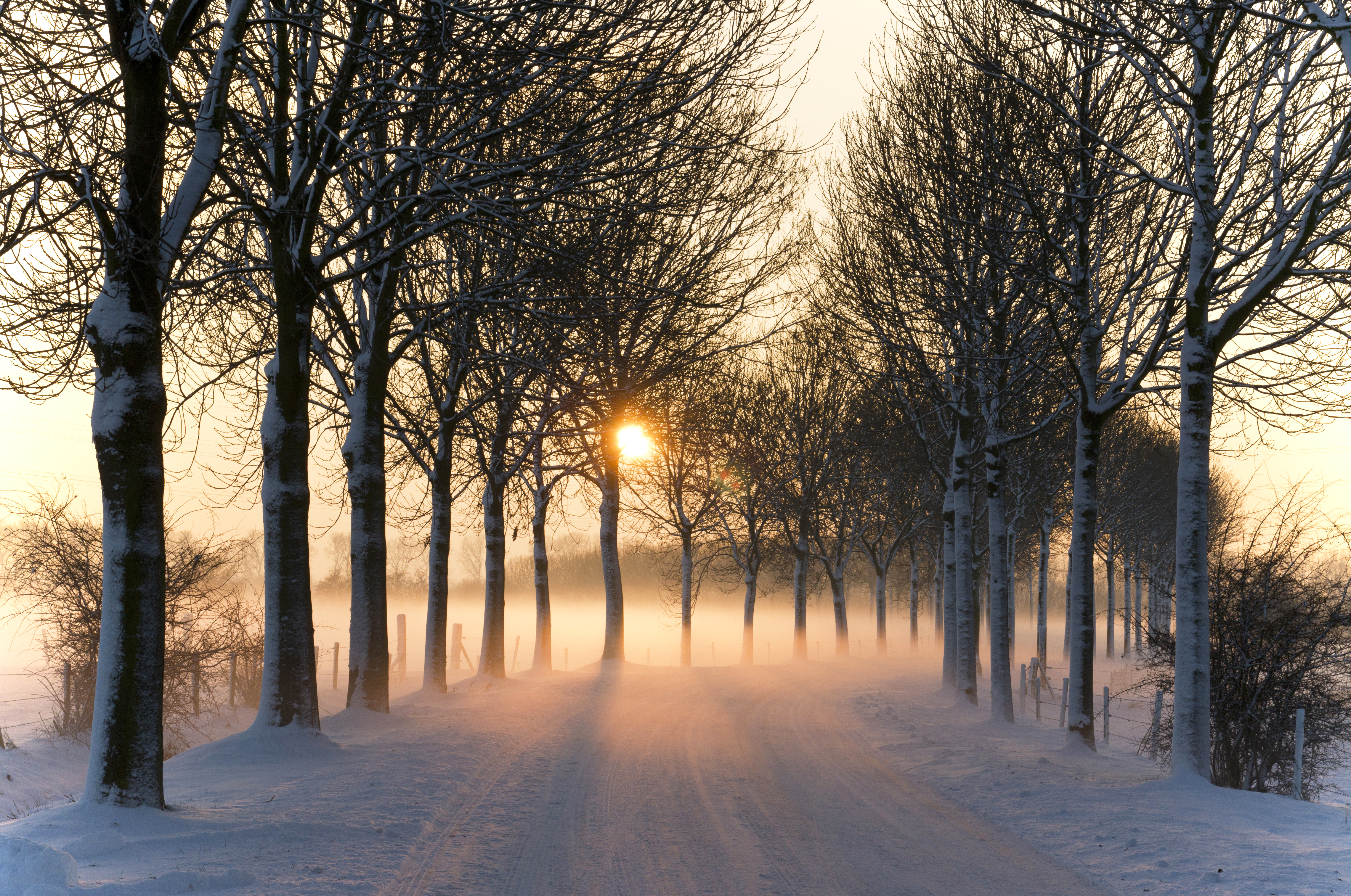 https://upload.wikimedia.org/wikipedia/commons/1/17/Misty_winter_afternoon_%285277611659%29.jpg