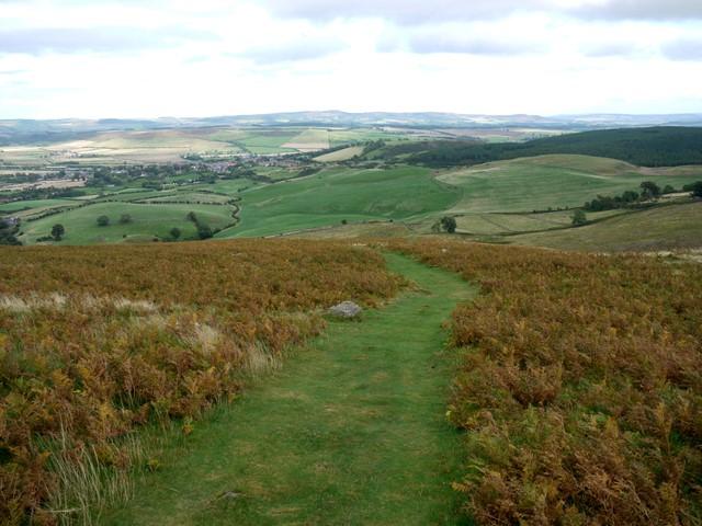 Path on Humbleton Hill - geograph.org.uk - 1509238