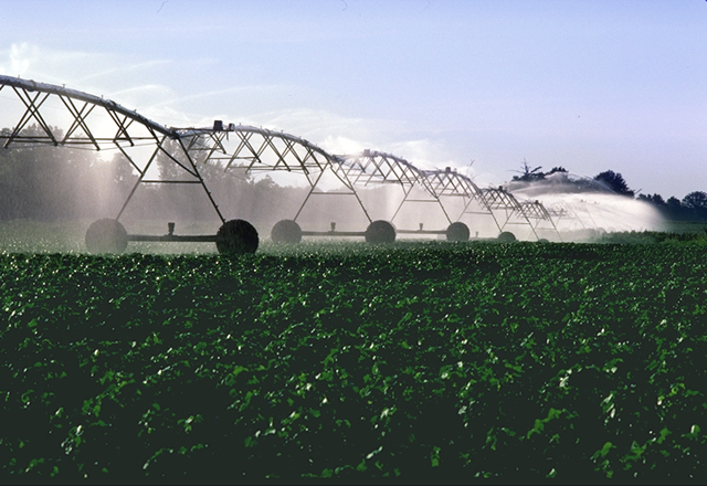File:PivotIrrigationOnCotton.jpg