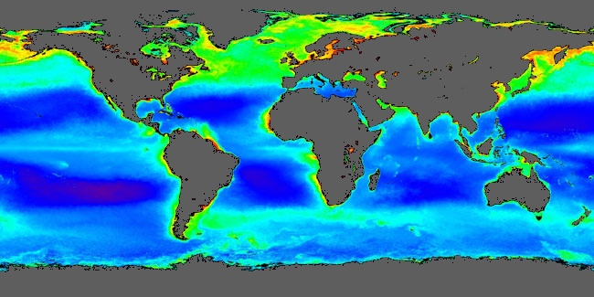 World concentrations of surface ocean chlorophyll as viewed by satellite during the northern spring, averaged from 1998 to 2004. Chlorophyll is a marker for the distribution and abundance of phytoplankton. Plankton satellite image.jpg