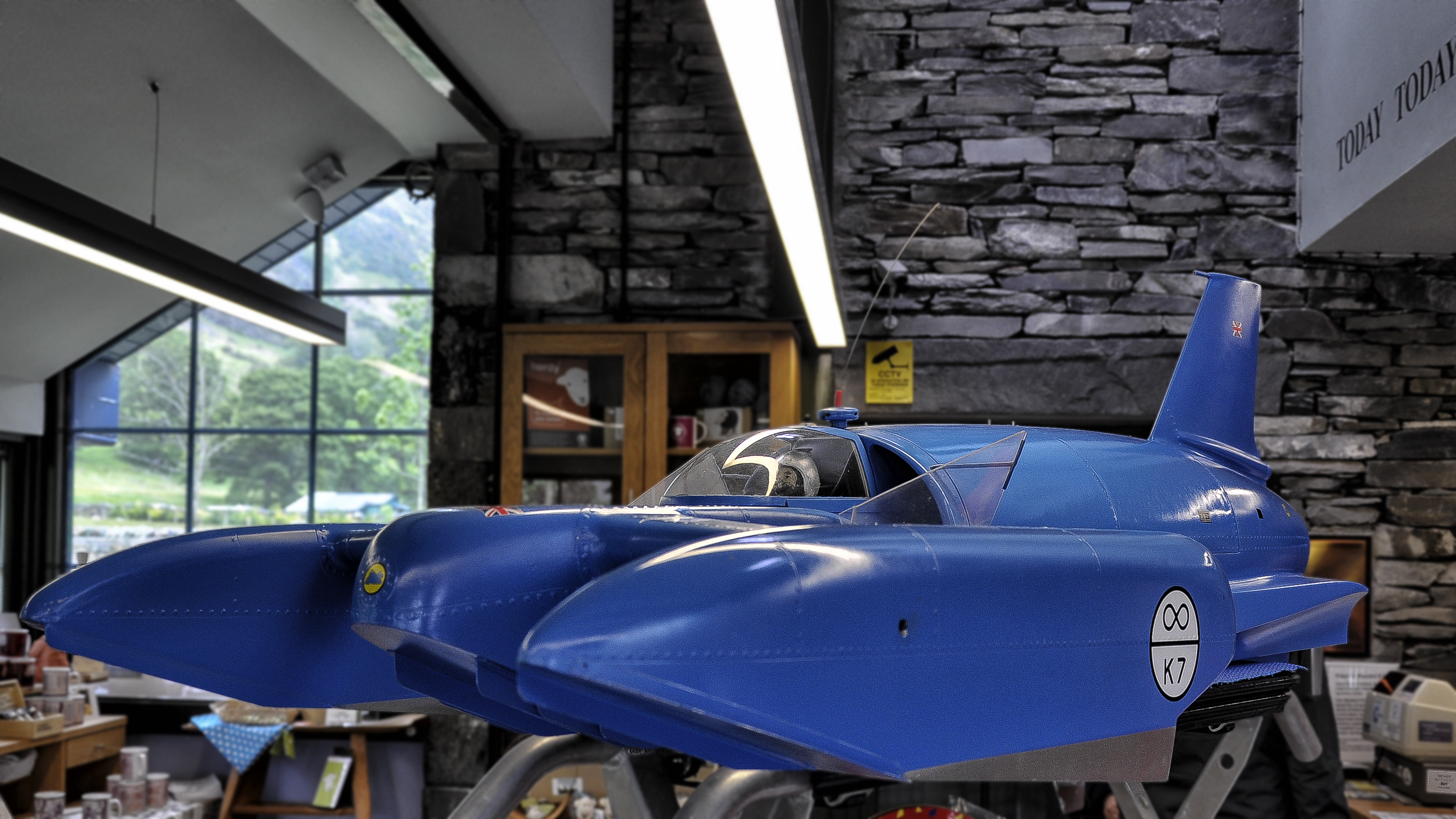 Bluebird Car Crash