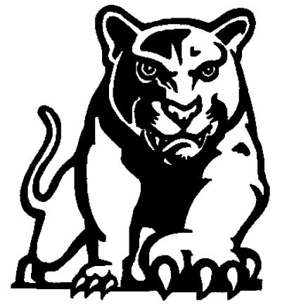 south central cougars