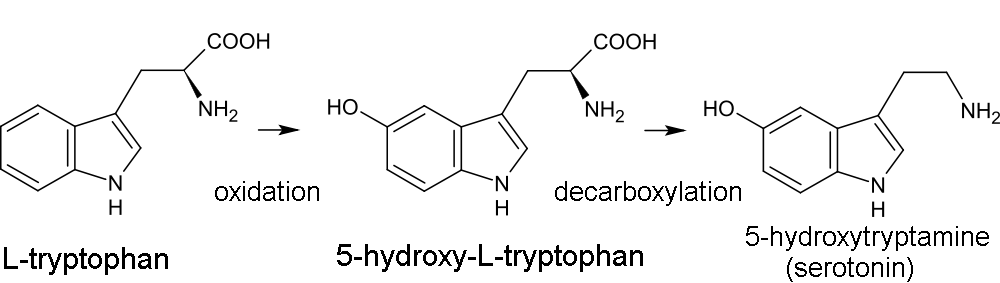 Synthesising Dmt From Tryptophan – 683598