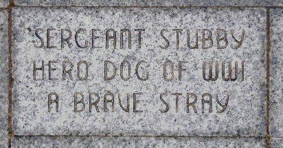 http://upload.wikimedia.org/wikipedia/commons/1/17/Sgt_Stubby%27s_brick_at_Liberty_Memorial.jpg