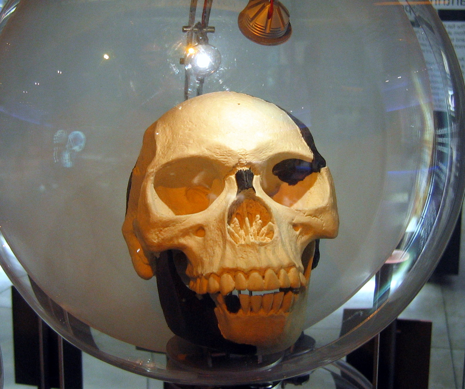 A Science Odyssey People and Discoveries Piltdown Man is revealed as fake
