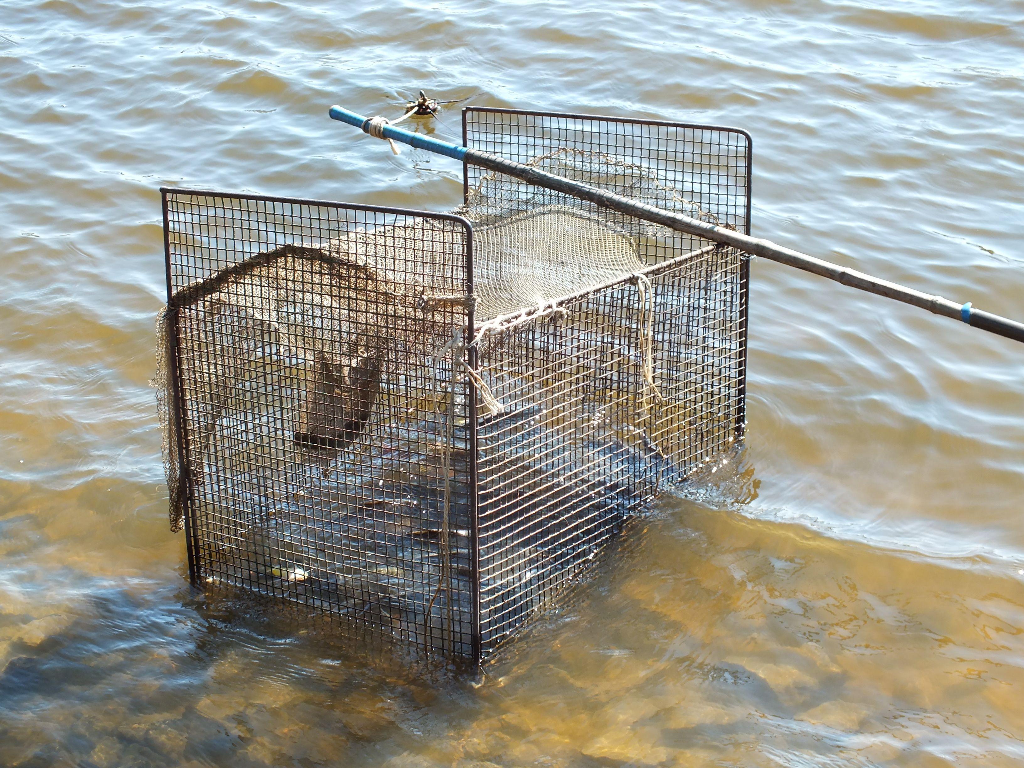 Из чего сделать садок для разведения рыбы своими руками