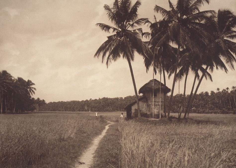 Old Houses in Kerala