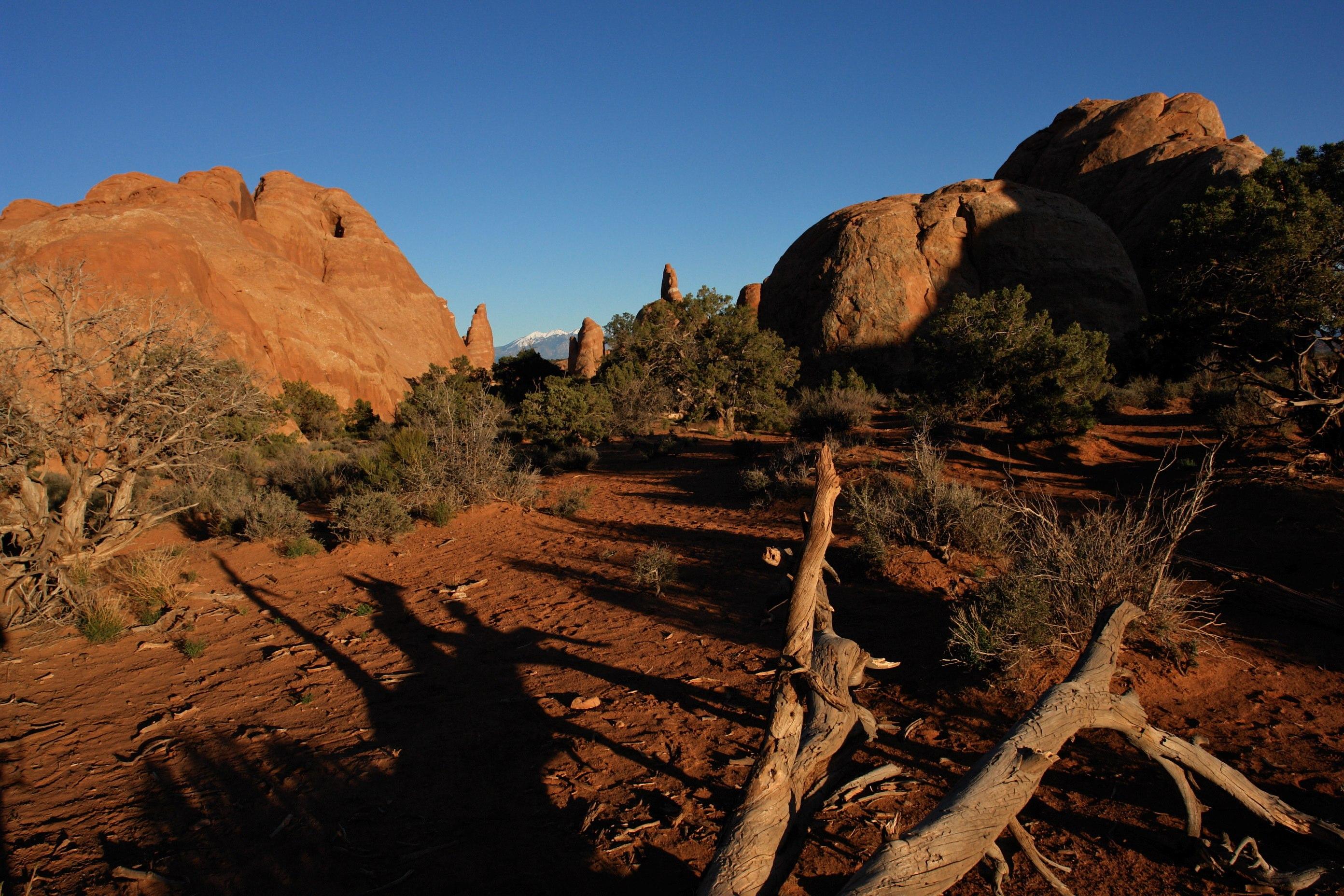 File:Arches National Park, Utah (Devils Garden Area) (3458780154 ...