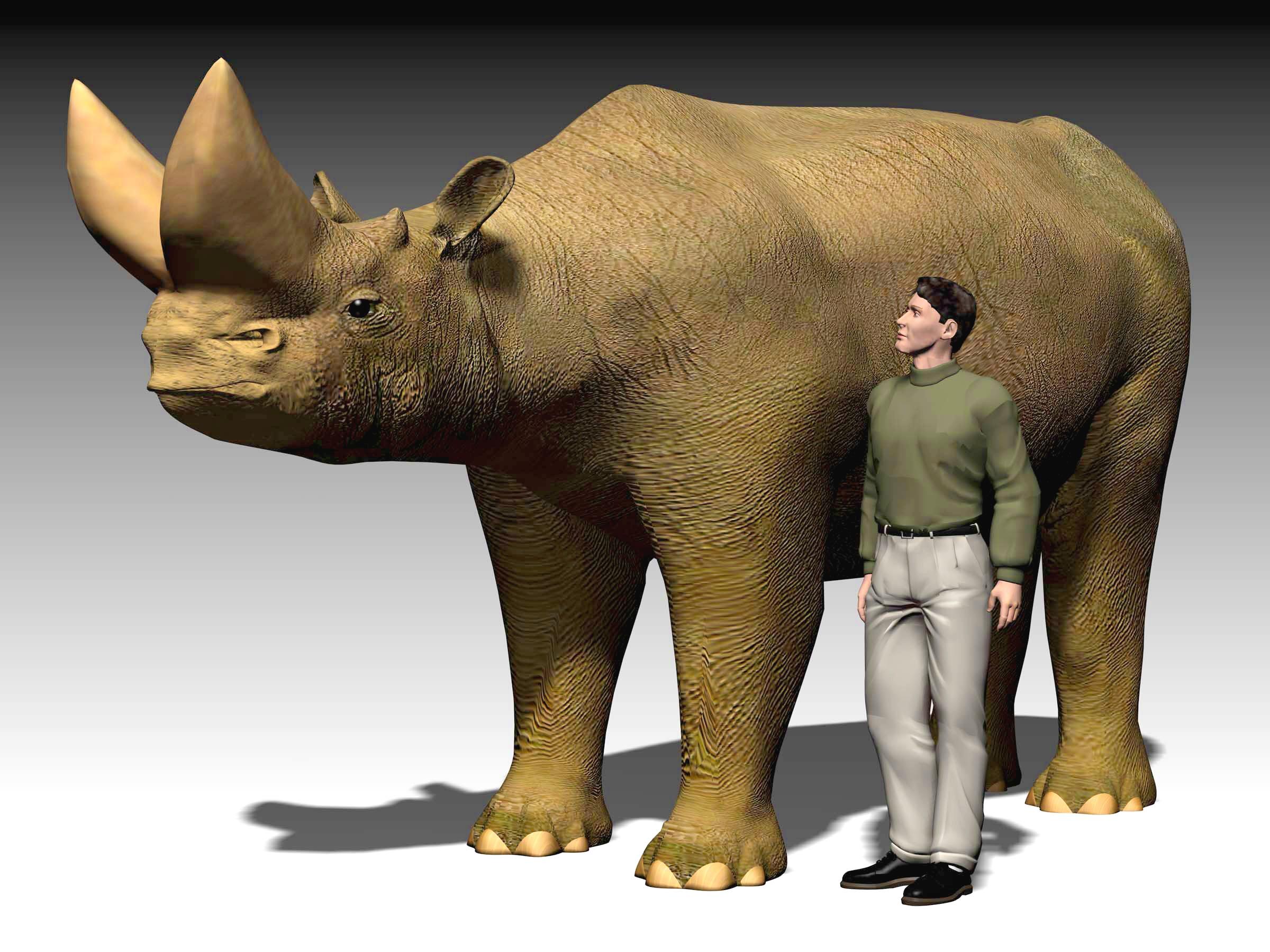 Arsinoitherium giganteum - Wikiwand - 548.6KB
