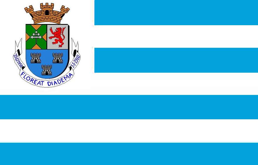 Ficheiro Bandeira de Diadema-SP f9bc65316cacf