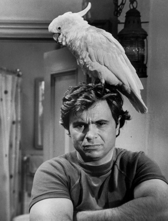File Baretta And Fred Robert Blake 1975 Jpg Wikimedia