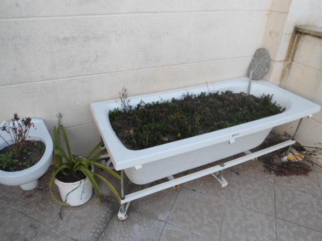 File:Bathtub Pot.JPG