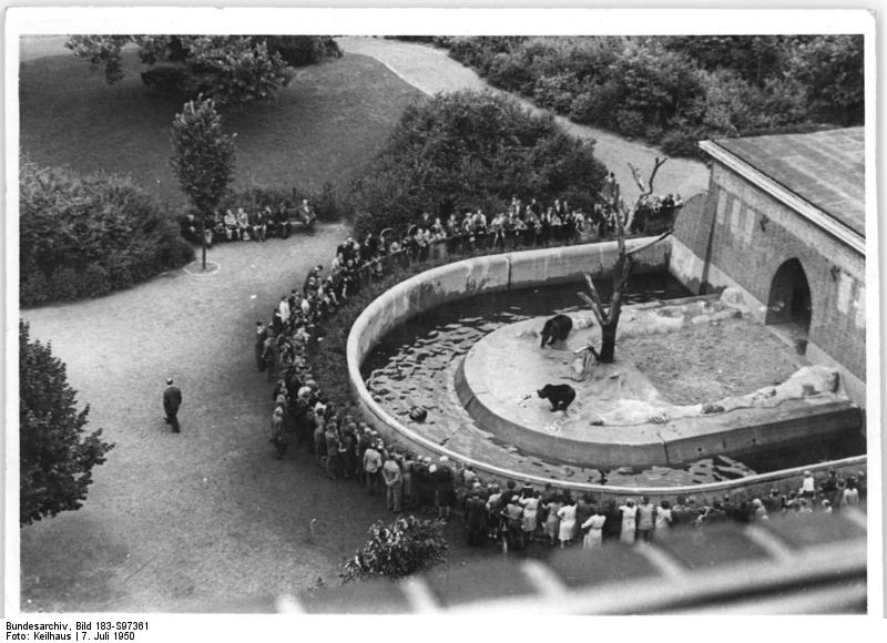 Köllnischer Park, Bärenzwinger, Bundesarchiv, Bild 183-S97361 / CC-BY-SA 3.0 [CC BY-SA 3.0 de (https://creativecommons.org/licenses/by-sa/3.0/de/deed.en)], via Wikimedia Commons