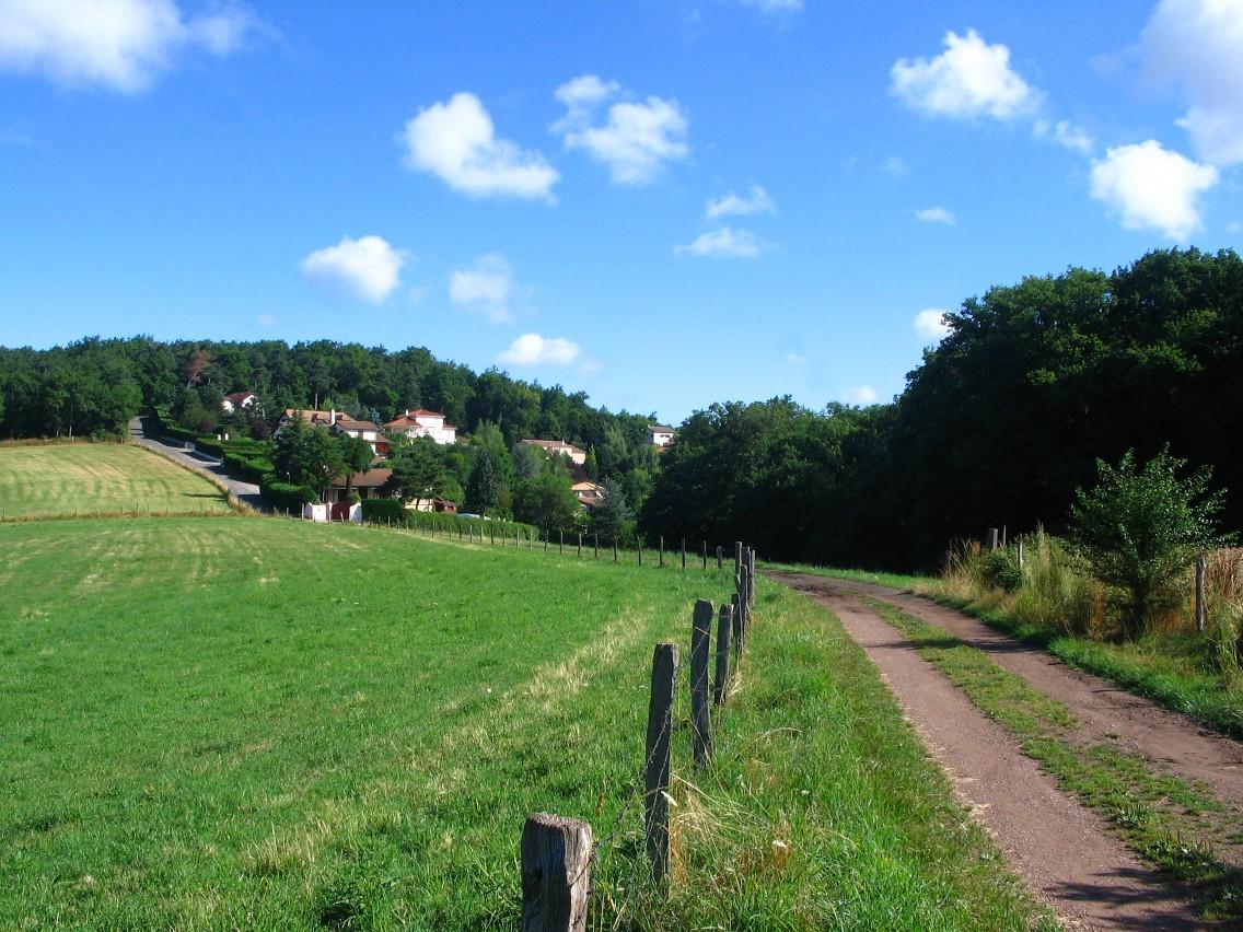 Chemin Sorb, 42.jpg