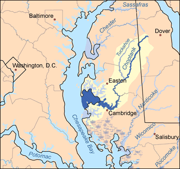 File wikimedia commons for Choptank river fishing report