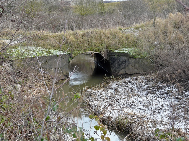 Culvert on Langley Brook, Middleton Lakes RSPB Reserve - geograph.org.uk - 1112254