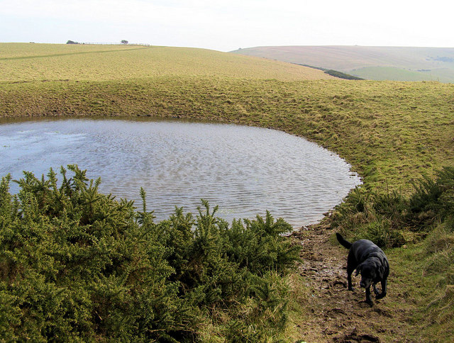 Dew Pond on Castle Hill - geograph.org.uk - 1141953