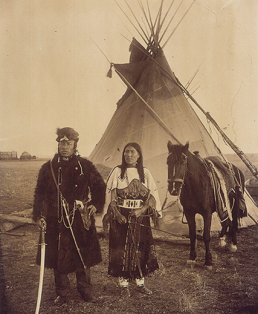 Canadian Native Dog Teams In  S Manitoba Free Images