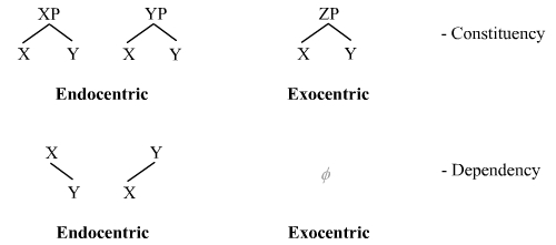Endocentric and exocentric structures