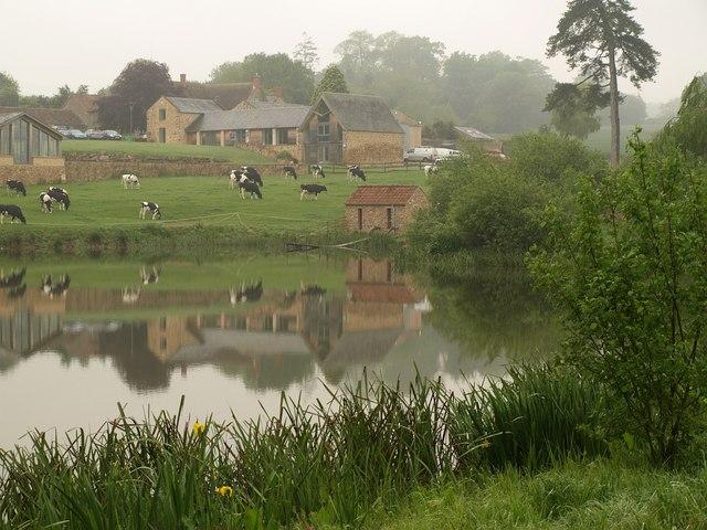 Fishing lake, Dillington - geograph.org.uk - 1307455