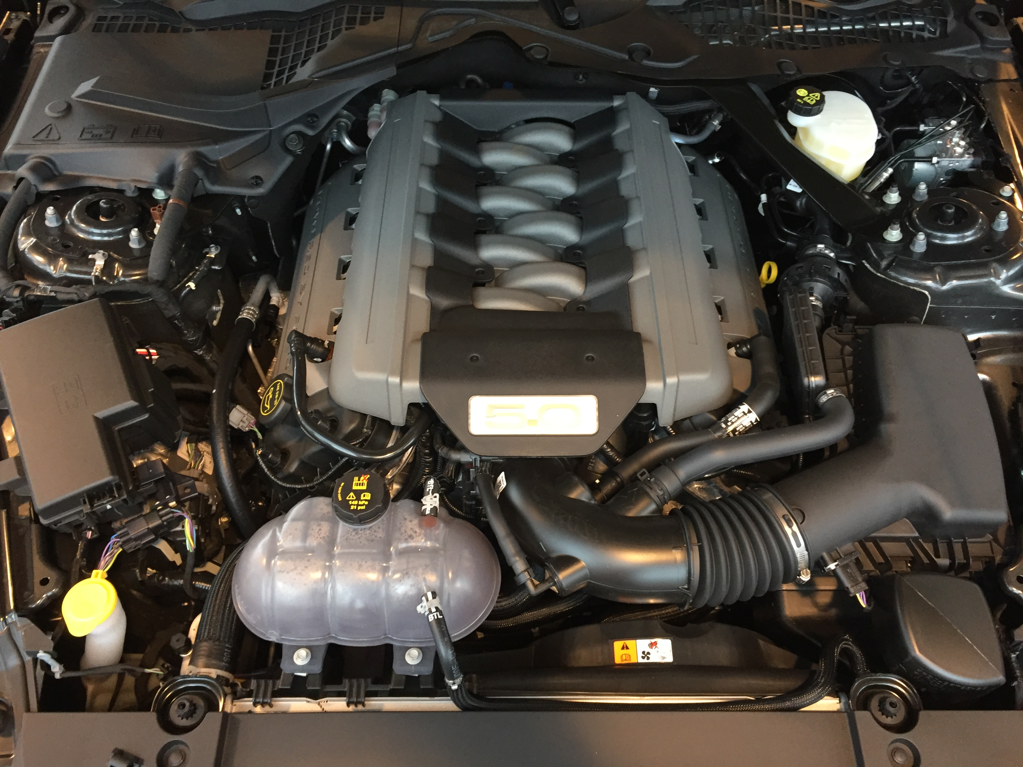 File Ford Mustang Gt V8 Motor Jpg