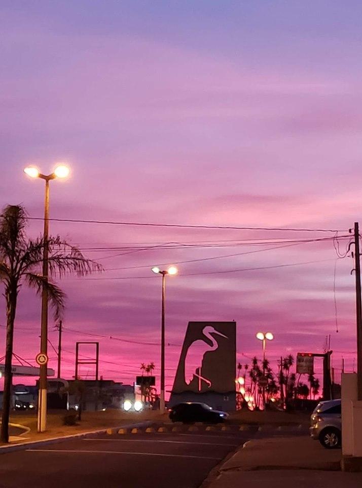 Garça São Paulo fonte: upload.wikimedia.org