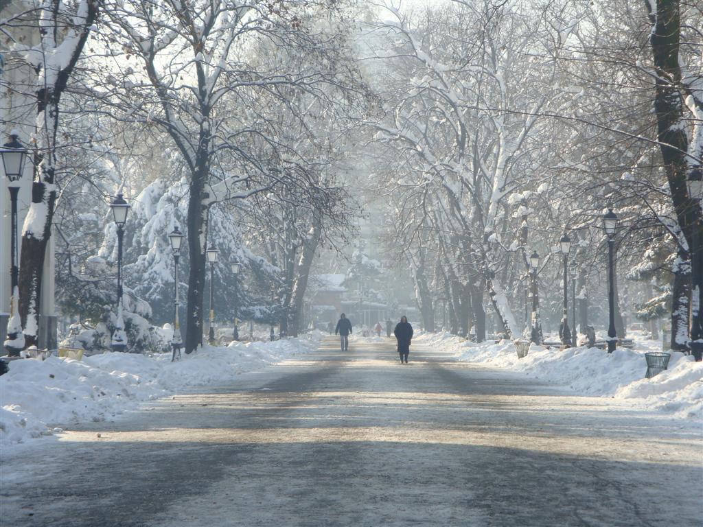 Zimska idila Gradski_park_Zemun_zima2