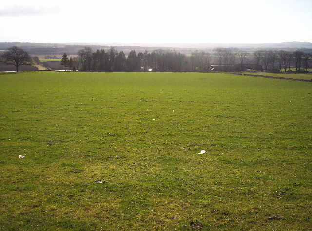 File:Grassy Field Above Mains of Balhall - geograph.org.uk ...