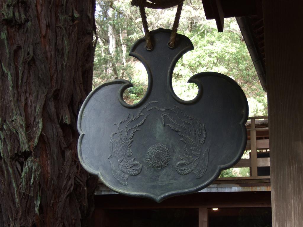 Umpan wikipedia for Kitchen yoshimoto summary