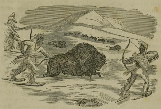 File:Indians Hunting Buffalo in the Winter.jpg