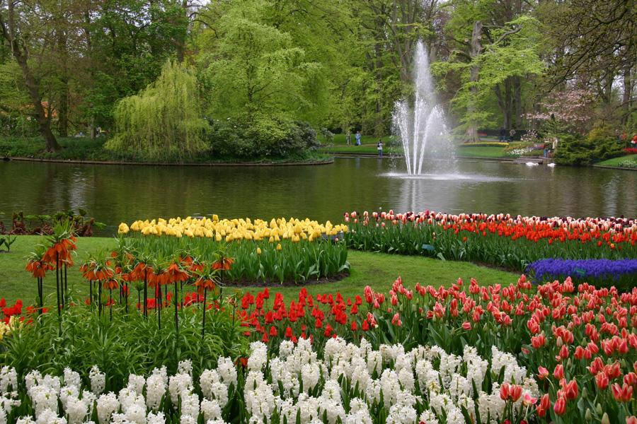 Voyage vers la Hollande aujourd'hui pour revoir le site unique de Keukenhof (Lisses, Pays-Bas), à l'apogée de ses floraisons. Keukenhof