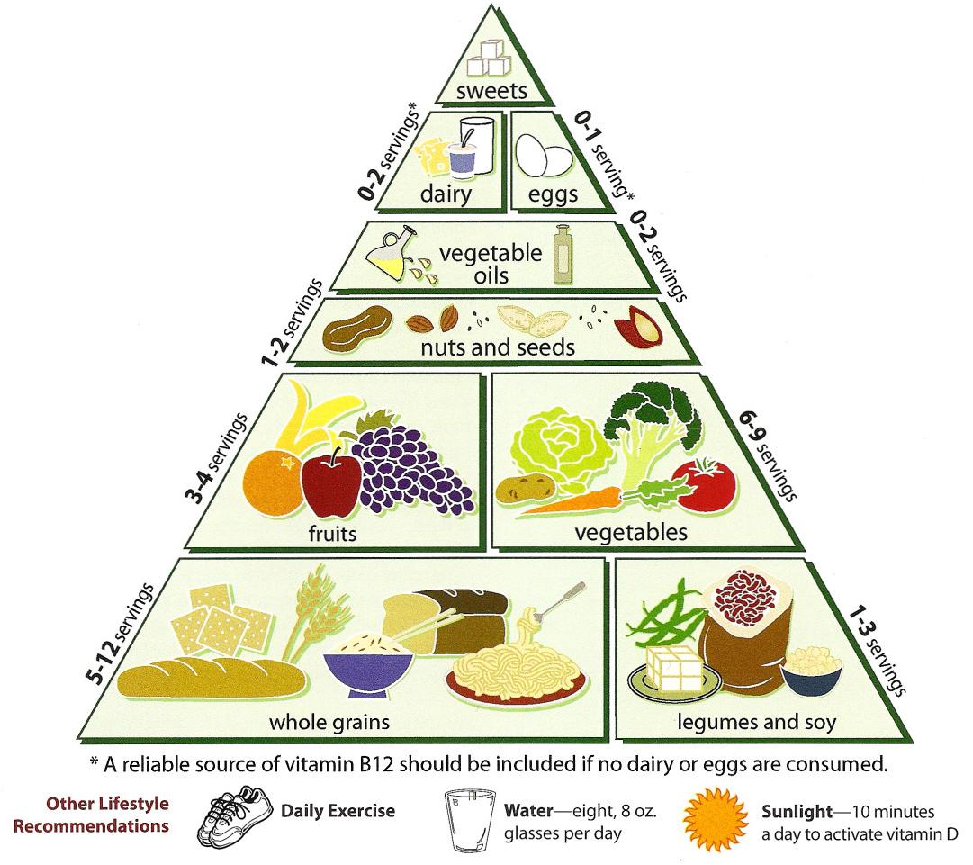 vegetarian diet pyramid - wikipedia