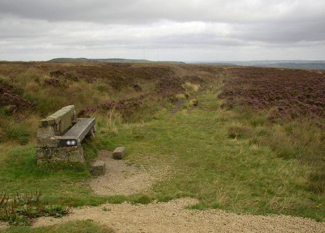 Memorial seat, Slaithwaite Moor, Slaithwaite - geograph.org.uk - 548106