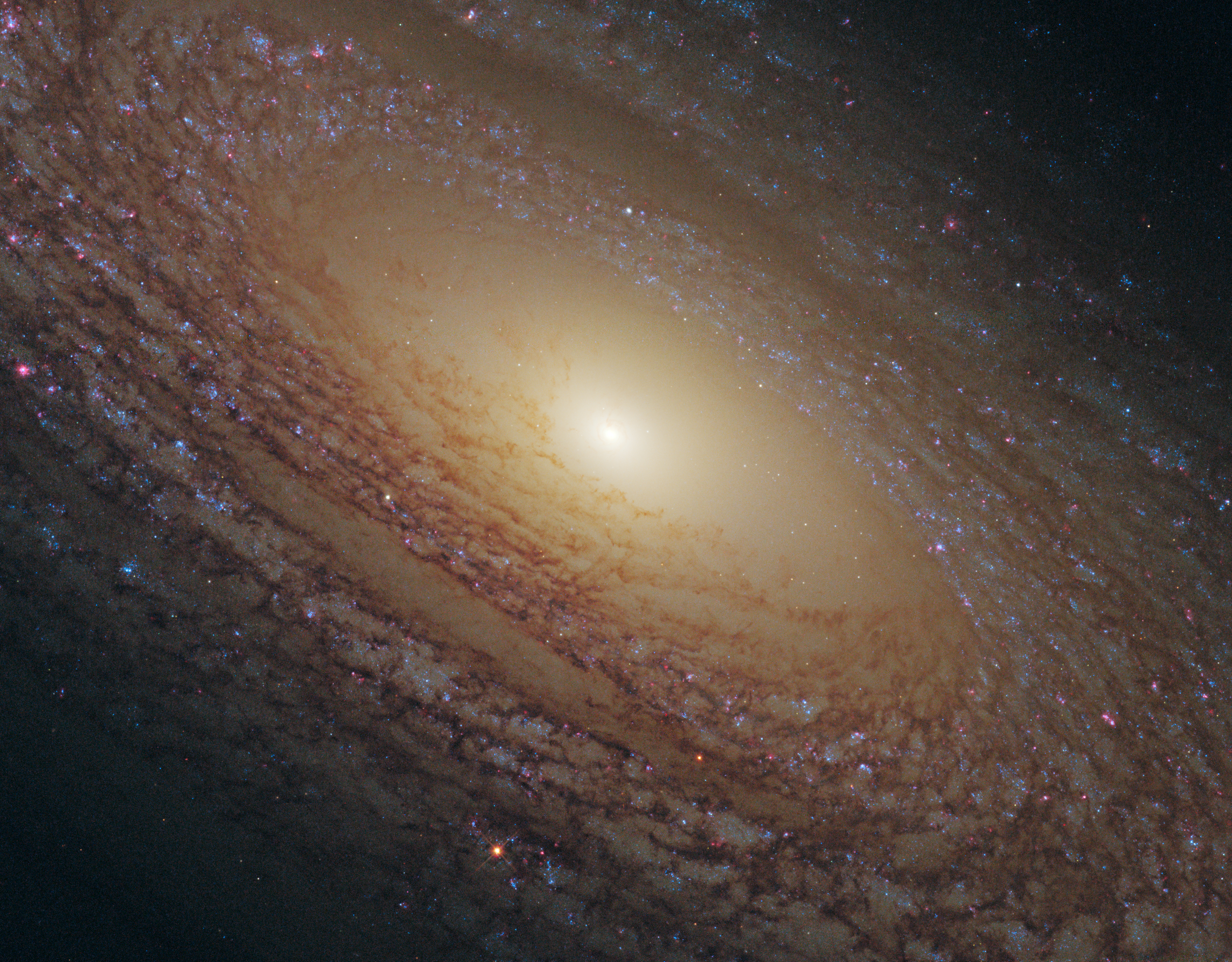 Depiction of NGC 2841
