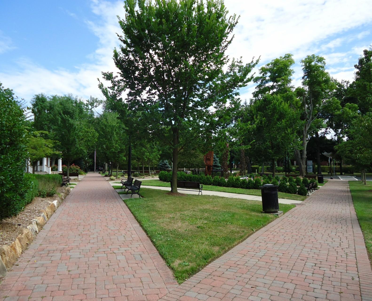 Assiciated Landscape Design Professionals