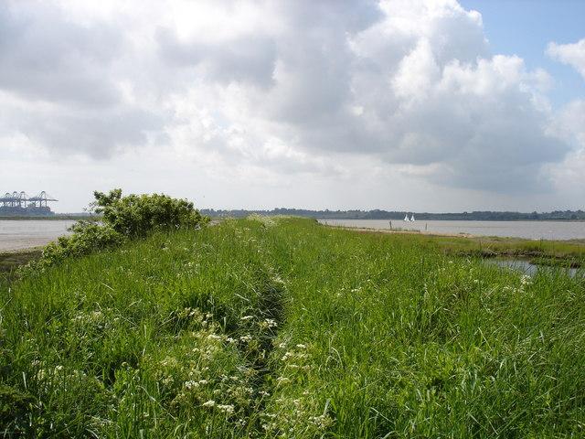 Old riverside path - geograph.org.uk - 1312409