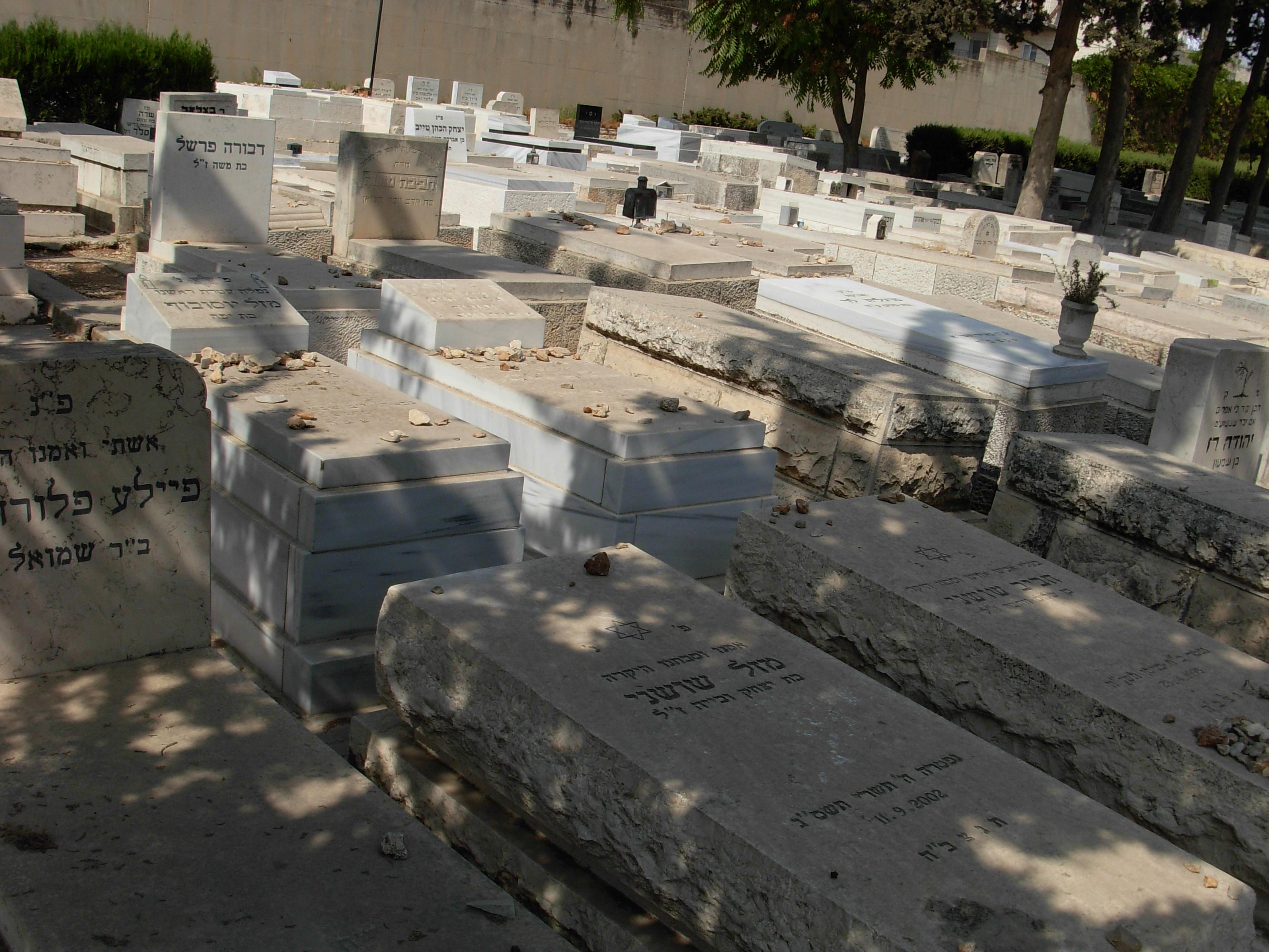 בית הקברות סנהדריה