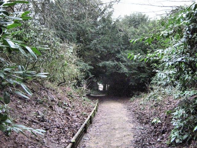 The Bateman Walk through the Tranquillity Gardens - geograph.org.uk - 1715357