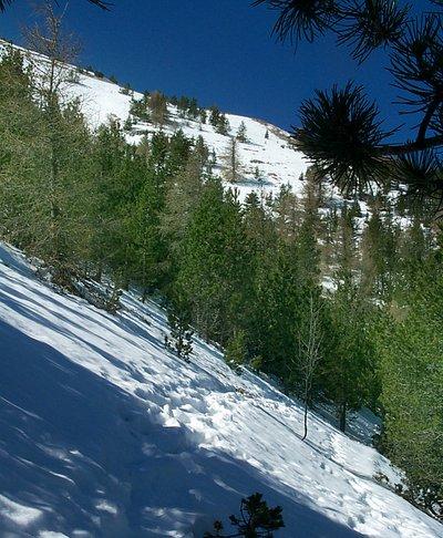 Fichier:Ventoux Nordseite Schnee unterhalb des Gipfels.jpg
