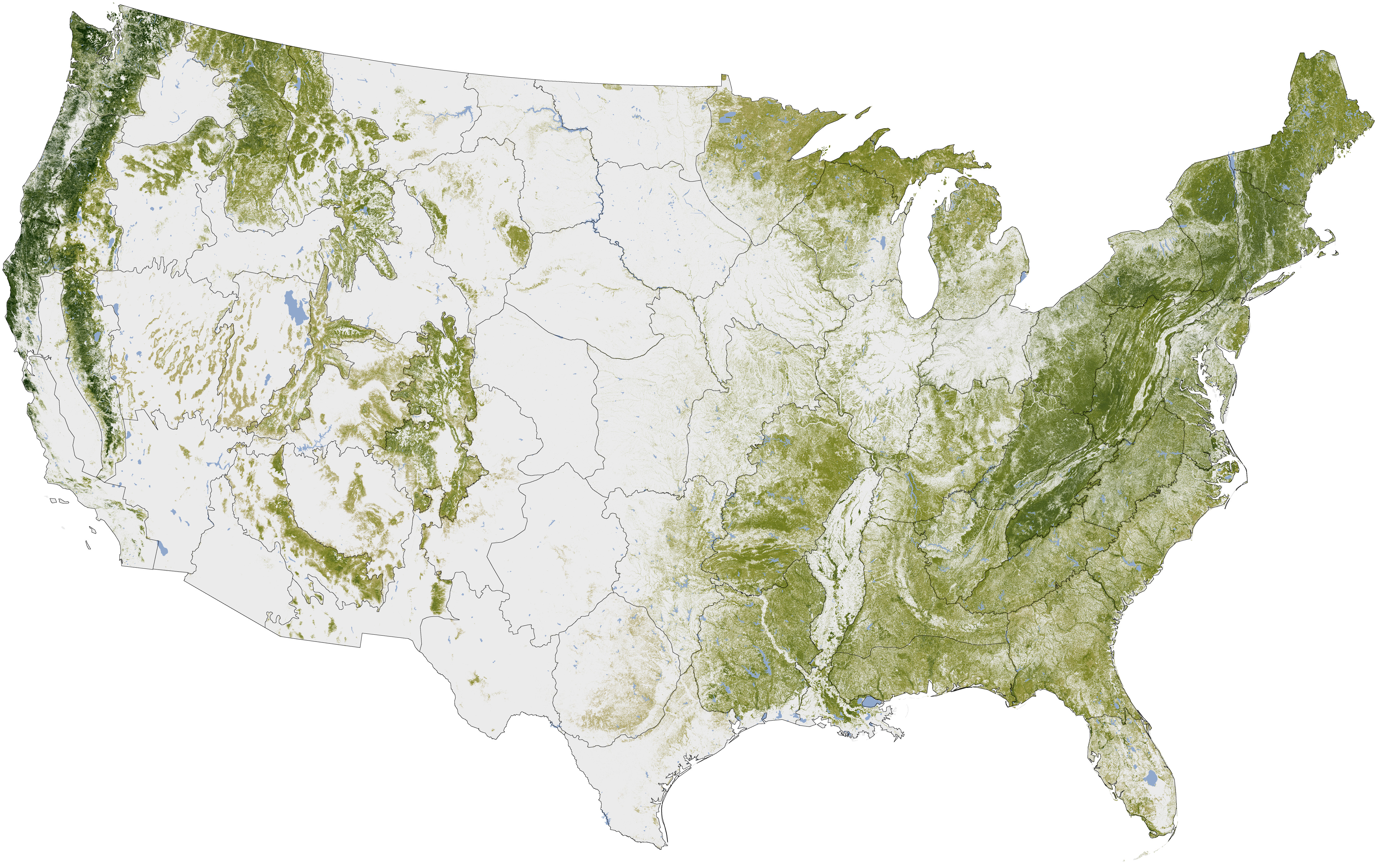 Where the Trees Are - NASA Earth Observatory.jpg