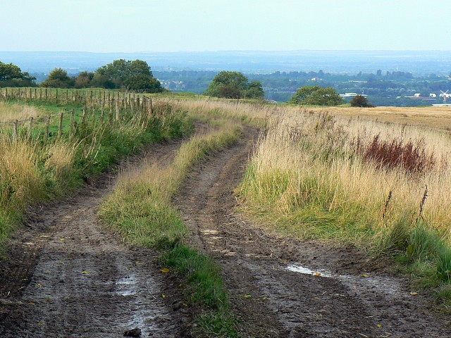 White Horse Trail, near Broad Hinton, Wiltshire - geograph.org.uk - 958364