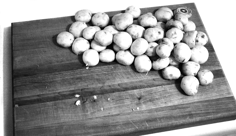 Seta comestible wikipedia la enciclopedia libre - Tipos de hongos en la pared ...